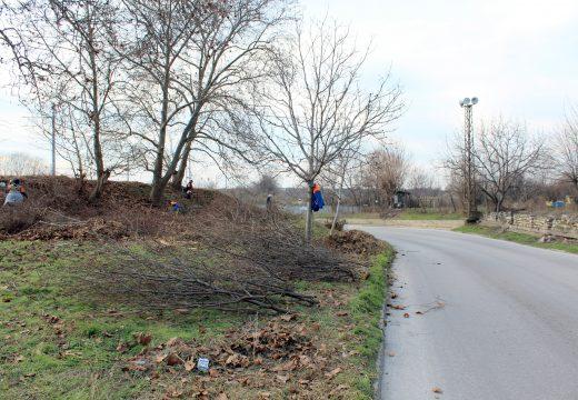 Разчистват крайпътната растителност в Пловдив
