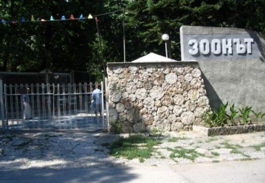 Модернизират Зоокъта на Варна